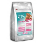 Canun Puppy-Junior Large & Giant 20 kg - LIVRARE GRATUITA
