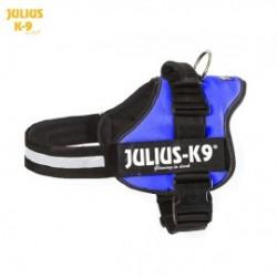 Hamuri K9 Power - Julius K9